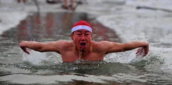 Winter Snorkeling - Be like the Polar Bear