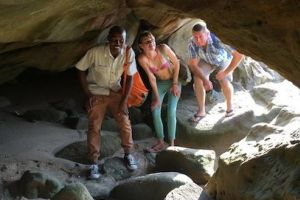 Whale & Dolphin Viewing - The Tidal Trail